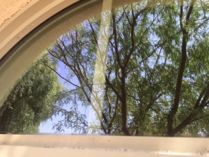 Window Cleaning in Phoenix and Queen Creek